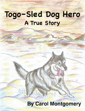 Togo Sled Dog Hero TH